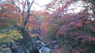 백천마을 가을풍경